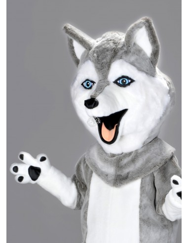 227b Husky Costume Mascot buy cheap