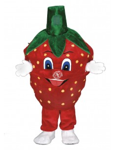 Strawberry costume della mascotte (figure peluche ripiena)