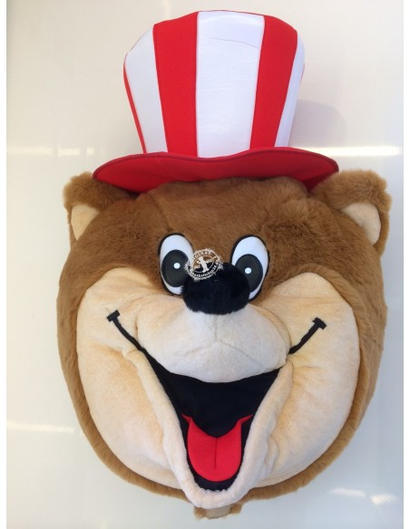 156b Bear Costume Mascot buy cheap